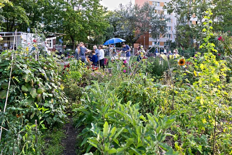 Gartenführung Internationale Gärten und Mitbring-Picknick @ Internationale Gärten