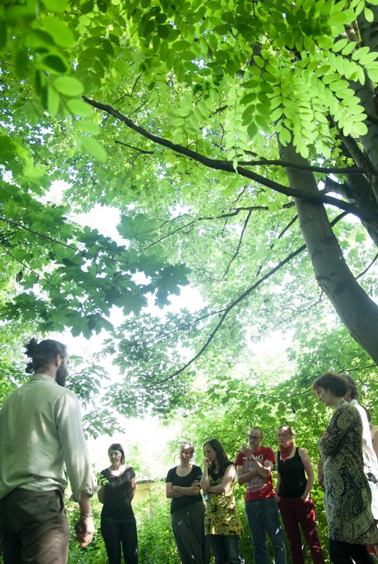 Sich in die Nesseln setzen – Permakultur im Garten @ Koko in der Alten Gärtnerei