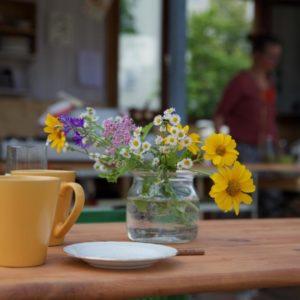 FÄLLT AUS – Einsteigerwissen für eine saubere und sichere Küche