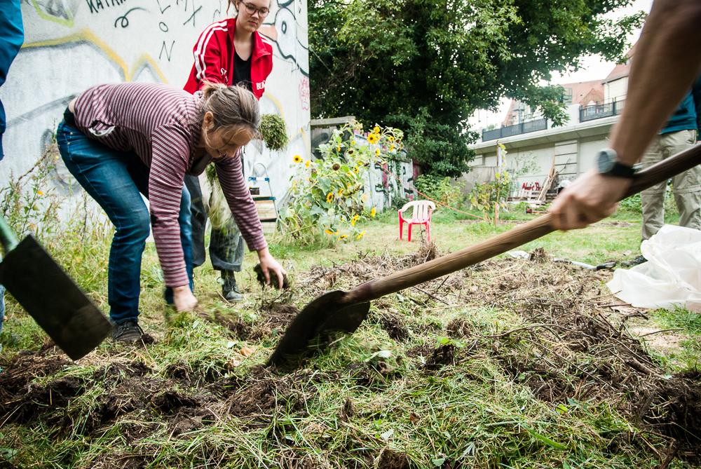 #everdayforfuture Aktionstag @ Wurzelwerk Pieschen