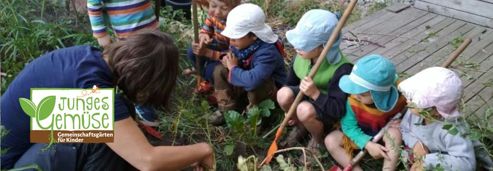 Test Junges Gemüse @ Gemeinschaftsgarten Johannstadt