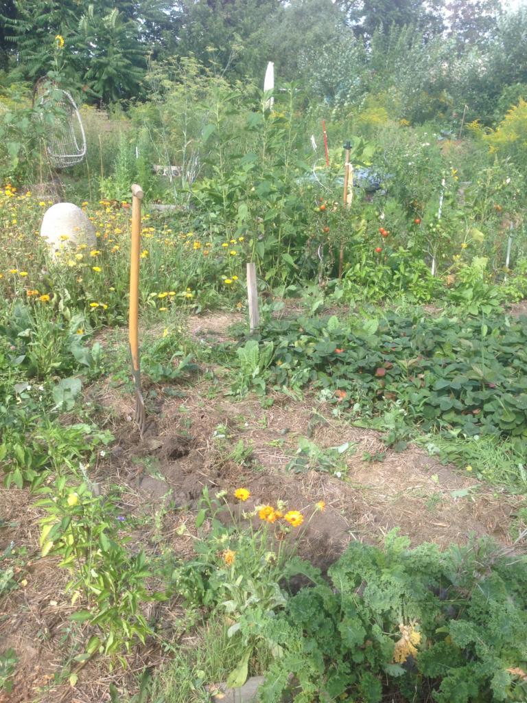 Sich im Kreis drehen – Stoffkreisläufe im Garten @ Wurzelwerk