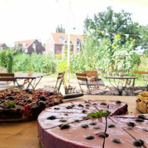 Wilde Flora Café im Grünen